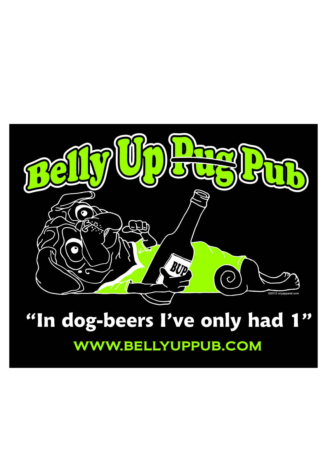 Belly Up Pub